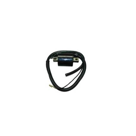 MOTORCYCLE HIGH COIL 04327610