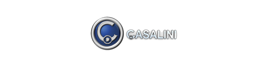 SCRAPPING CASALINI used spares