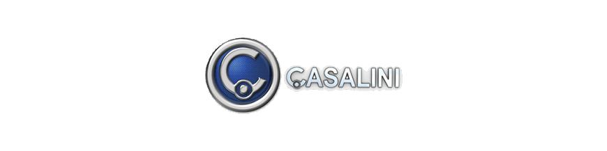 CASALINI M10 2011 used spares