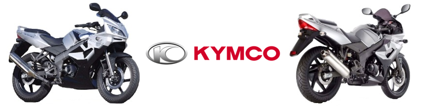 KYMCO QUANNON used parts