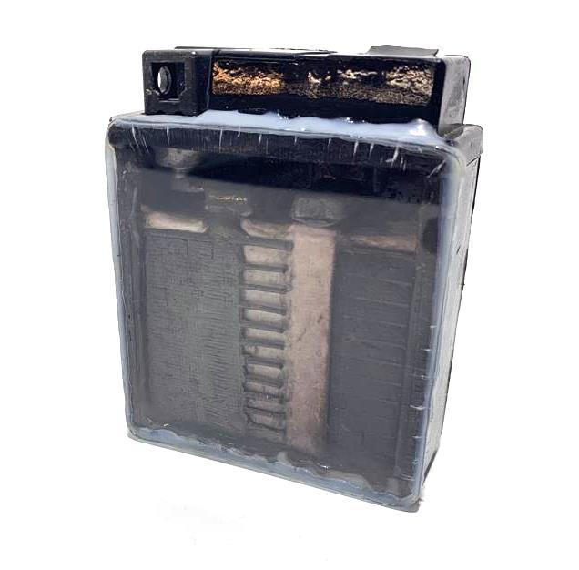Vista interior de una batería Yuasa AGM